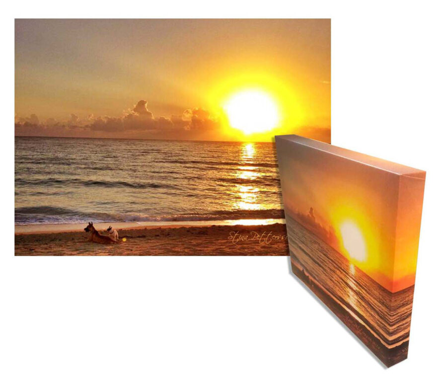 Limited Edition Medium/Small 11″ x 14″ Canvas Wall Art Painting Of Miami Rose Sunset Dogs On the Beach – FREE Shipping