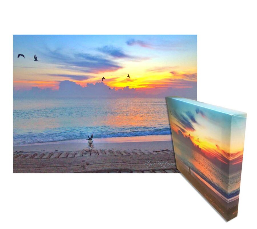 Limited Edition Medium/Small 11″ x 14″ Canvas Wall Art Painting Of the Miami Beach Sunset Colors & Adorable Boston Puppy Fetching – FREE Shipping