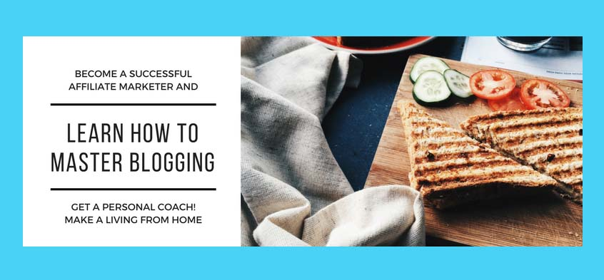 Master Blogging And Affiliate Marketing - Get A Personal Coach! Make A Living From Home